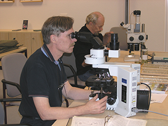 Research is largely working with a microscope. Photo: Frank Menzel