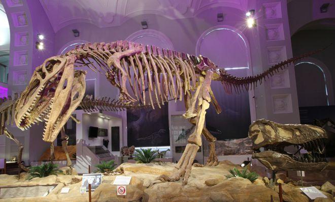 Valtava giganotosaurus on suurimpia tunnettuja petodinosauruksia.